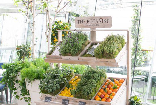 The Botanist Gin x OXO